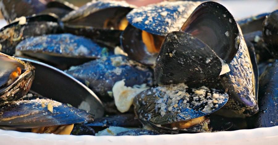Ston Croatia Mussels