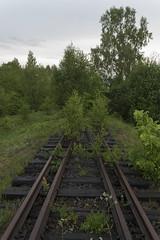 Neizmantotais Priekules-Kalētu dzelzceļš, 28.05.2016.