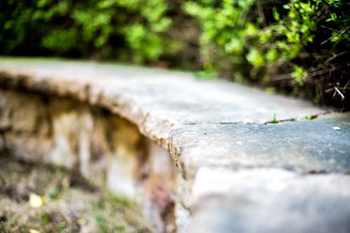 white black color green art nature grass leaves stone landscape photography 50mm photo nikon raw texas unitedstates bokeh 14 curves colorphotography houston glenwood limestone leadinglines aquietplace glenwoodcemetery nikond600