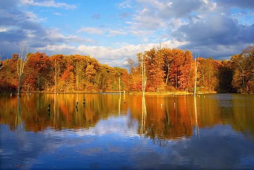 statepark travel autumn columbus ohio red lake reflection fall nature landscape unitedstates outdoor foliage alumcreek 5photosaday sonynex