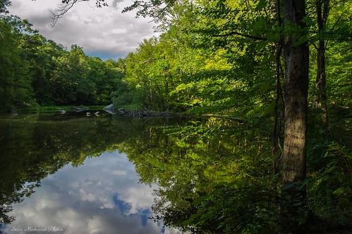 trees summer lake green water reflections newjersey pond nikon summertime ringwood ringwoodstatepark d3100 smack53