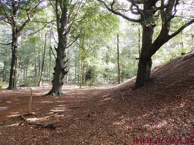 Baarn                13-09-2014        40 Km   (53)