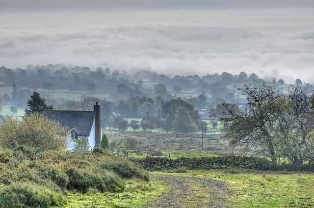 Foggy day near Clee Hill, Shropshire (Explored)
