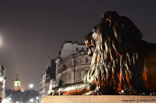 city uk england london statue night nikon trafalgarsquare bigben lions d5100