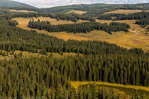 Grand Mesa View | by IntrepidXJ
