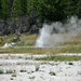 Pink Geyser (Pink Cone Group, Lower Geyser Basin, Yellowstone Hotspot Volcano, nw Wyoming, USA)