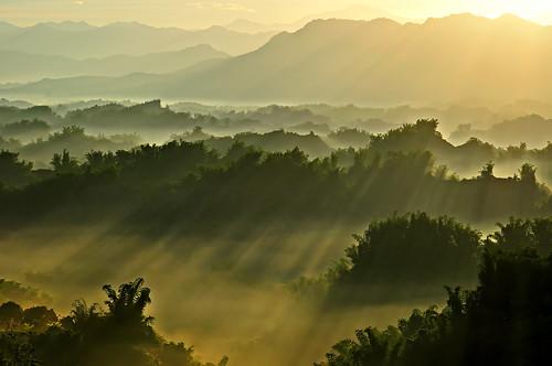 d90 sigmaapo70300mmf456dgmacro 風景 二寮 taiwan tainan 畫意攝影 salonphotography landscape 逆光 backlight