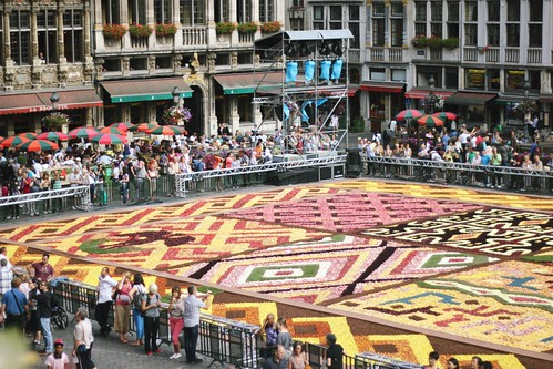 flower carpet view from city hall balcony | by The Art of Exploring