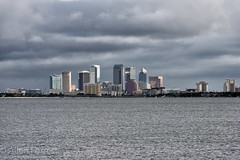 City of Tampa Skyline from Ballast Point