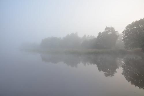 mist lake fog pond surrey morningmist frensham frenshamlittlepond