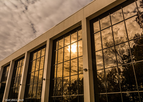 clouds reflection sunset sundown trees nikon