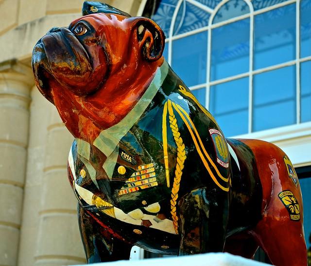 Military Bulldog - Outside Old Batavia Post Office - IL