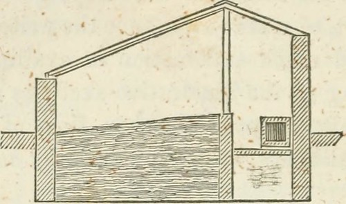 """Image from page 370 of """"The fruit, flower, and kitchen garden"""" (1851) 