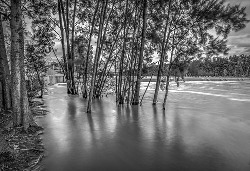 longexposure river blackwhite australia newsouthwales nd400 nepeanriver emuplains canon5dmkiii