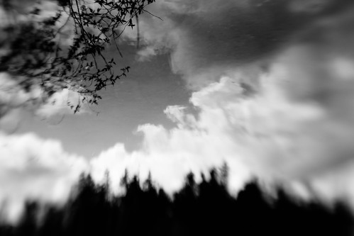 lensbaby blackandwhite abstract pacificnorthwest clouds reflection canoneos5dmarkiii sky blur trees washington