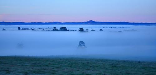 morning winter cold weather fog sunrise dawn nikon foggy australia victoria valley vic gippsland warragul strzeleckiranges mtworth westgippsland d5100 mountworth strzeleckis nikond5100 phunnyfotos gippypics