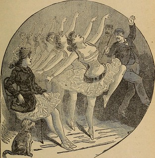 """Image from page 244 of """"Theatrical and circus life;"""" (1893) 