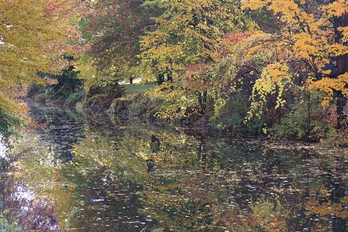 towpath erie canal fayetteville 13057 monet