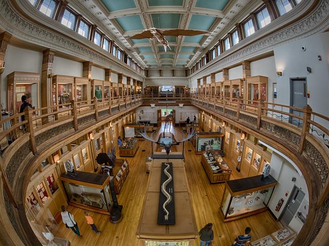 Fisheye at the Museum