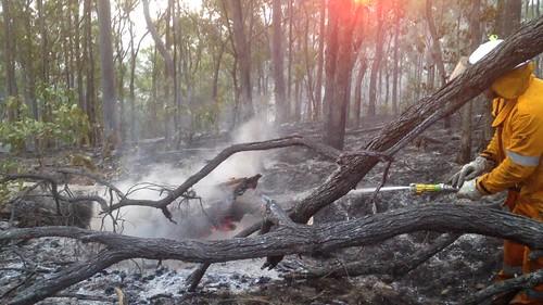 wildfire bushfire incident willowvale fire qld rfsq rfs qldifre video mopup blackout sunrise graveyardshift