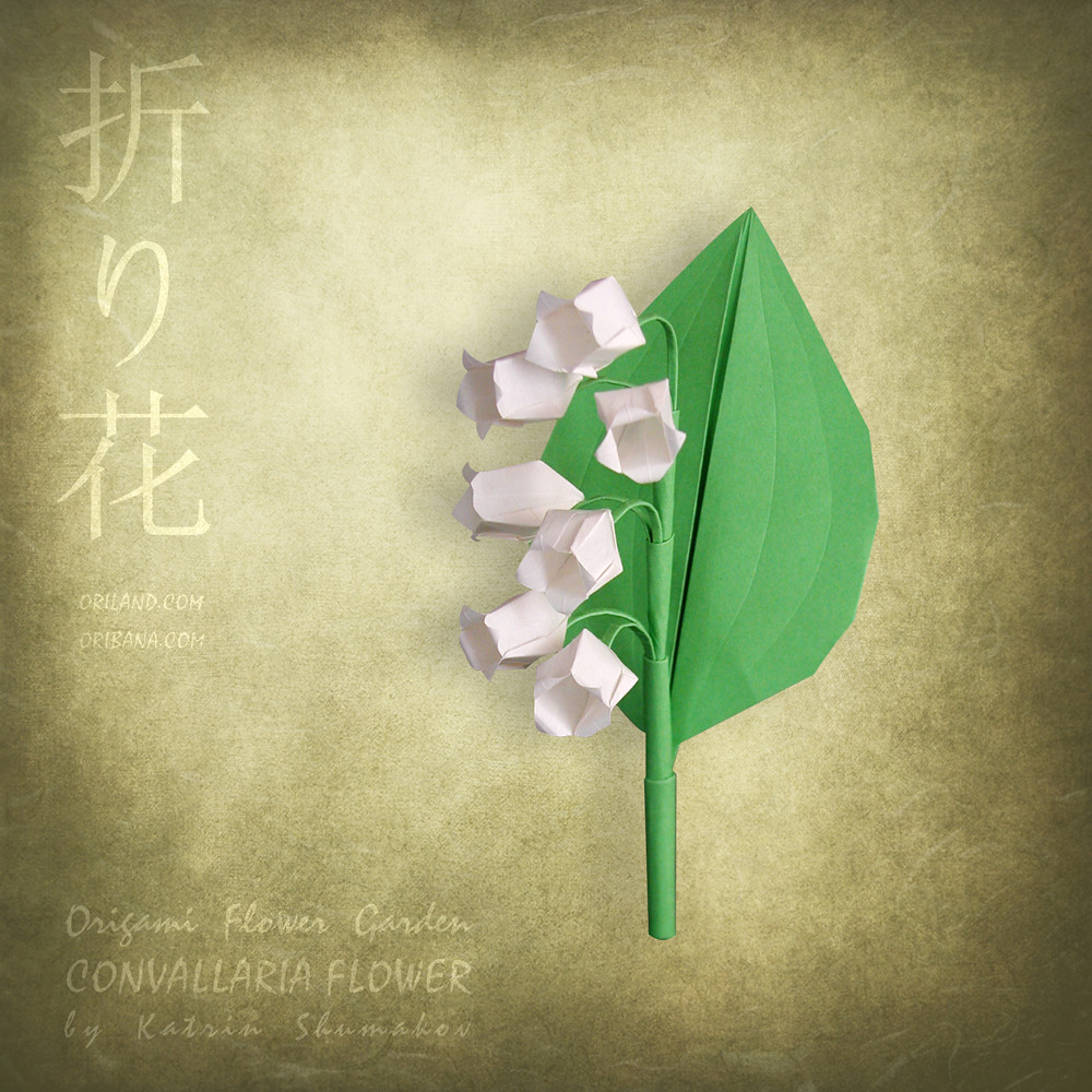 Origami Flowers - origami how to | 1000x1000