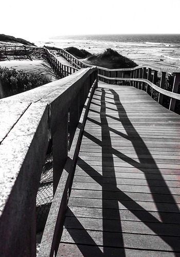 cameraphone sunset red bw white plant black flower beach landscape southafrica succulent indianocean coastal vegetation boardwalk easterncape portelizabeth summerstrand nelsonmandelabay iphone4