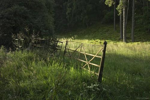 morning sunrise scotland gate sony grantownonspey advie nex7 sony0mmf00