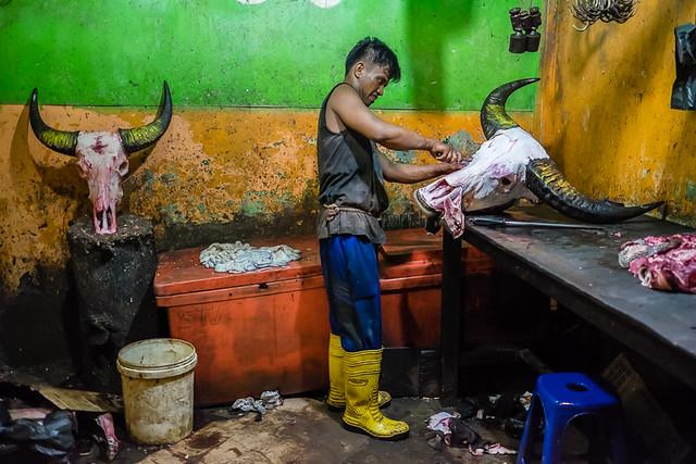 Bulls' heads, Jambi,Sumatra