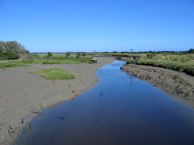 Ferry Channel, Pagham Harbour