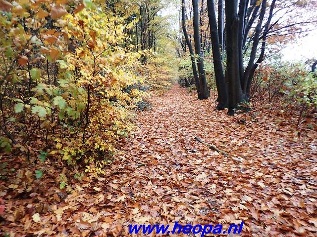 2016-11-16    3e Rondje-WolfHeze   25 Km  (16)