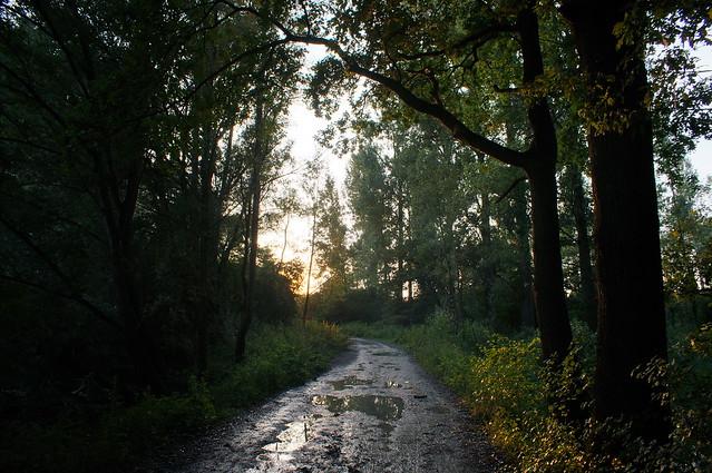 The Way to the Sun / Der Weg zur Sonne
