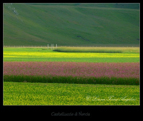 P1410860-001   by lo.tangelini