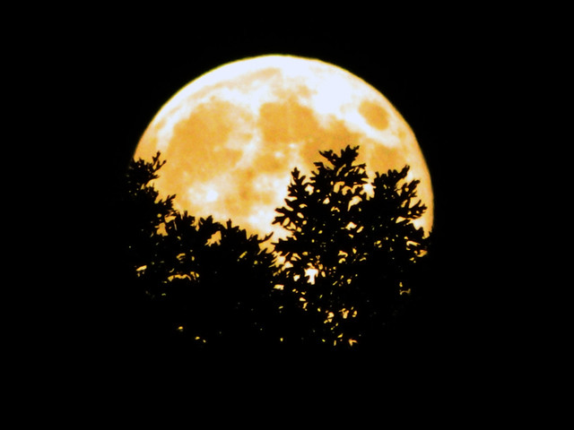 The crazy Supermoon  August 10, 2014