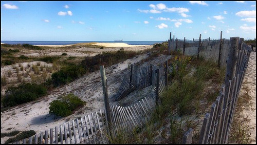 landscape beach sand grass beachgrass fence dunes sunlight sky clouds shadows cloudshadows barrierfence snowfence ocean oceanship capehenlopen statepark lewes delaware delawarenature nature naturelovers earthnature autumn fencefriday cellphone phonephoto iphone iphone5s photoshop nik viveza colorefexpro brown green gray blue white yellow 100x2016 100xthe2016edition image92100 naturallight iphonenature beachscape travel landmark 365