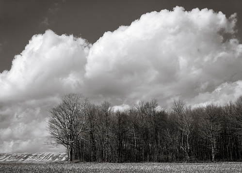trees plants field clouds unitedstates pennsylvania agriculture summerhill smcpfa50mmf14
