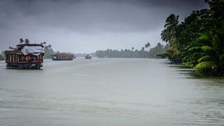 Rain on the backwaters   by Nagesh Kamath
