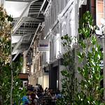 01 Viajefilos en Singapur, Chinatown 10