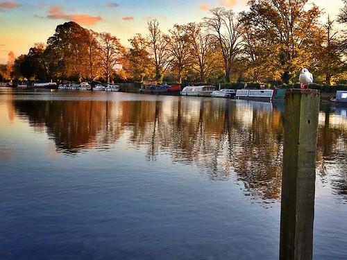 thames landscape autumn nature river reflection iphone