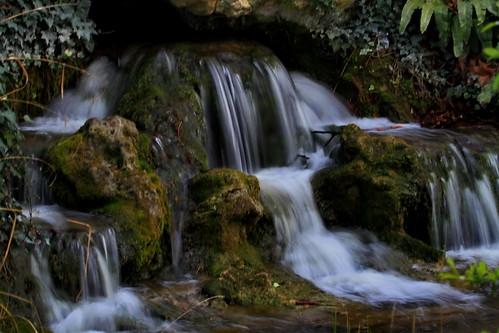 france canon eau flou vincennes chutedeau ruisseau inexplore canoneos7d