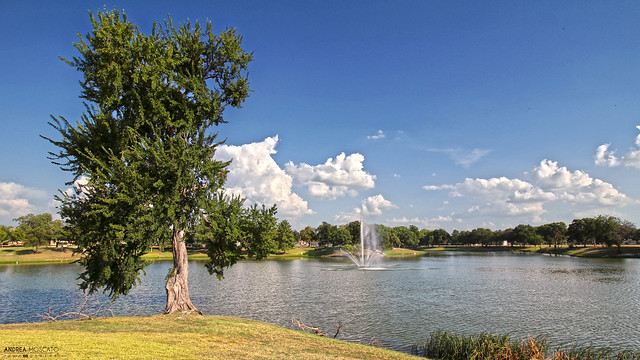 Lake Cliff Park - Dallas, Texas