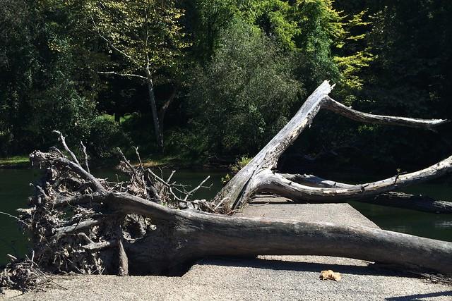 日, 2014-09-14 12:47 - Croton River