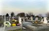 Allerheiligen auf dem Sauerländer Friedhof