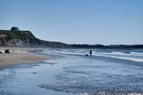ocean dog house canada beach waves novascotia group master bluff kingsburg hirtlesbeach
