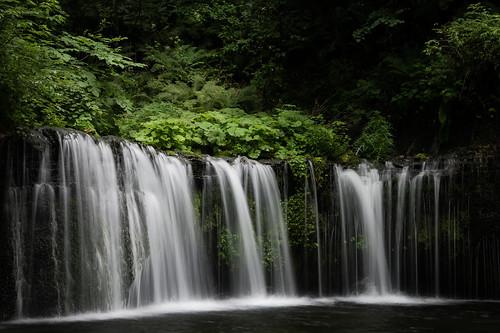 summer green nature japan waterfall wide falls fresh karuizawa nagano naganoprefecture shiraito kitasakudistrict