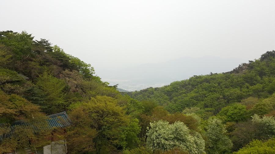 Nguyen, Anna; South Korea - Episode 14 (14)