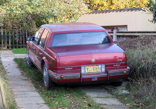1986 Cadillac Seville 4.1 | by Spottedlaurel