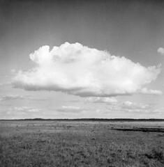 Store Mosse (Vast Bog), Kvsj, Smland, Sweden | Clouds