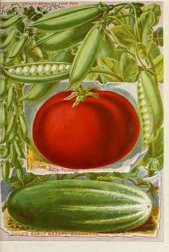 Cucumber, tomato, peas. John Lewis Childs 1895 | by Swallowtail Garden Seeds