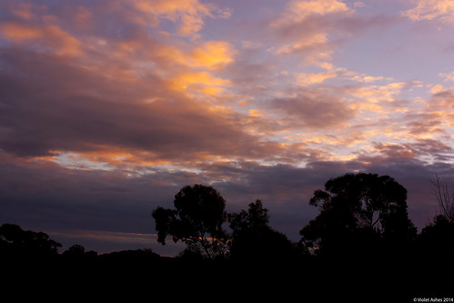 sunset beautiful silhouette clouds canon sunsets australia bluesky southaustralia gawler canonphotography sunsetphotography 365project canoneos450d sunsetaday violetashessunset
