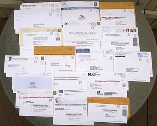 Random Political Junk Mail   by Judith E. Bell